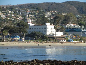 laguna-beach-homes-ocean-life (10)
