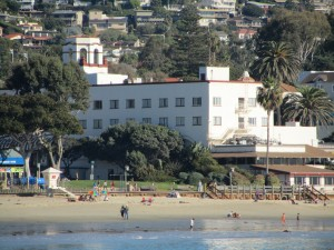 laguna-beach-homes-ocean-life (11)