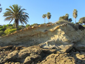laguna-beach-homes-ocean-life (34)