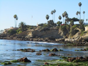 laguna-beach-homes-ocean-life (5)
